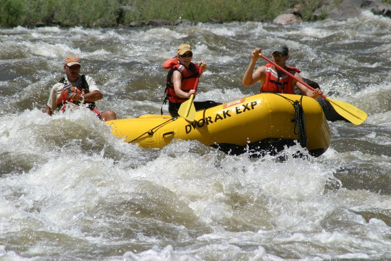 learn to raft