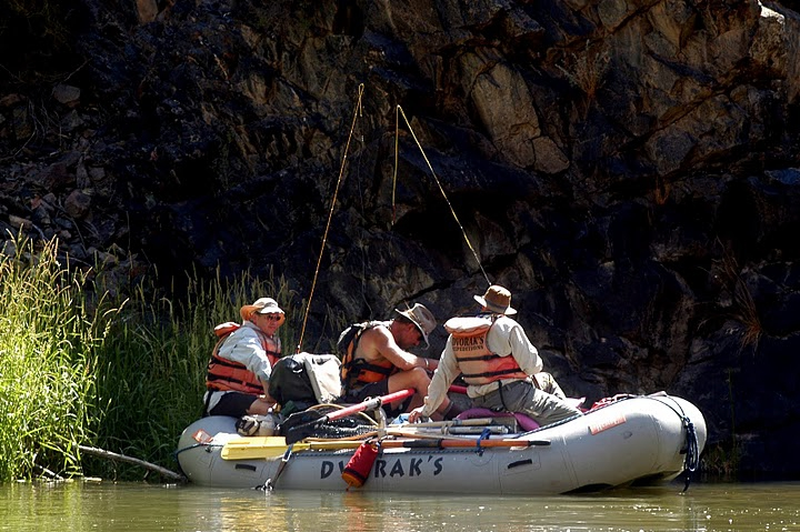 Imagine 4 peaceful days trout fishing in award winning waters on the Gunnison River Gorge.