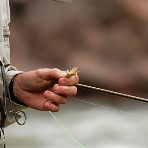 Fly vs spin fishing in Colorado