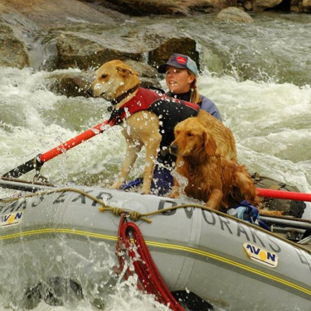 Even the family dog will enjoy Dvoraks multi-sport adventures