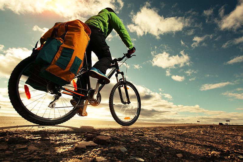 Plan Your Next Epic Mountain Bike Trip Book Early And Save