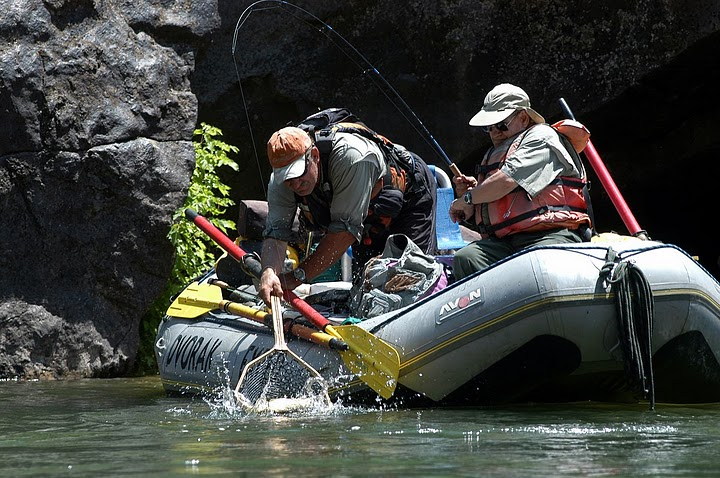 Book your early season Gold Medal fly fishing float trip with DVK.