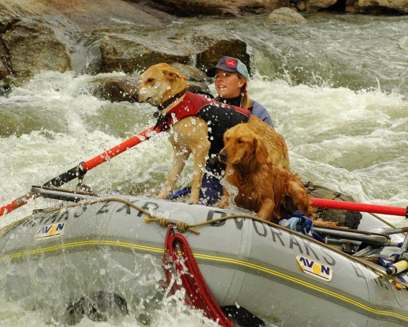 The whole family, including your dog, is welcome on DVK's Rio Grande spring break expedition
