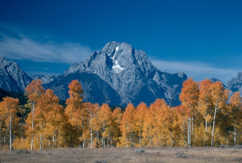 4x4 tours to see the aspen change for fall with DVK