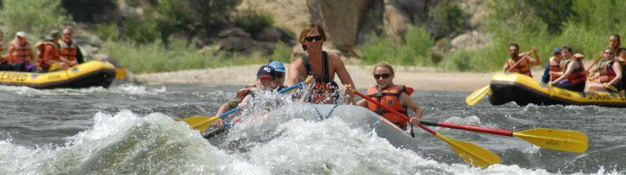 Browns Canyon Rafting Dvorak Expeditions