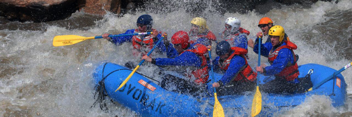 whitewater rafting with dvorak expeditons